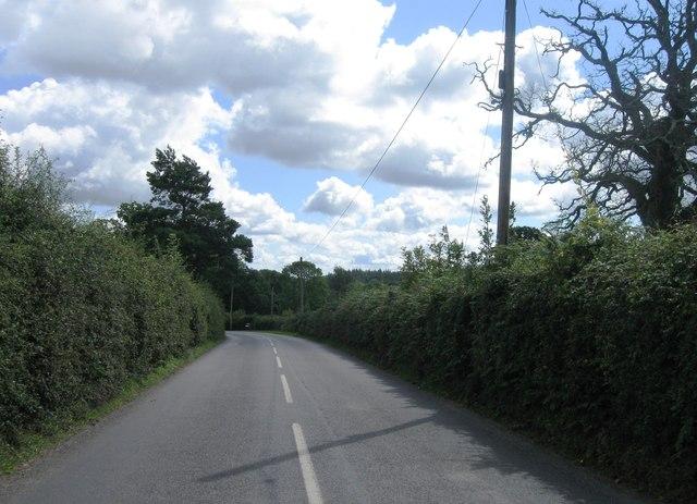 Road east of Minstead