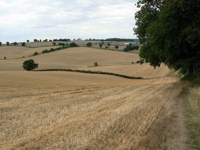 Landscape near Woodborough Park
