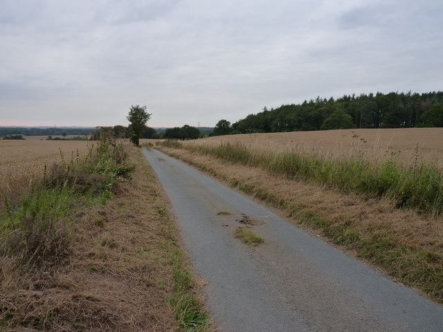 The lane to Copley from Rudge
