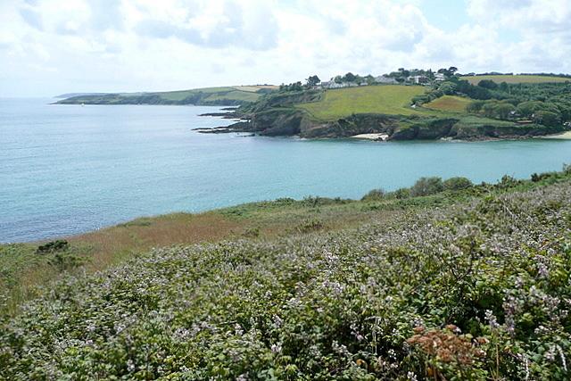 View across Maenporth