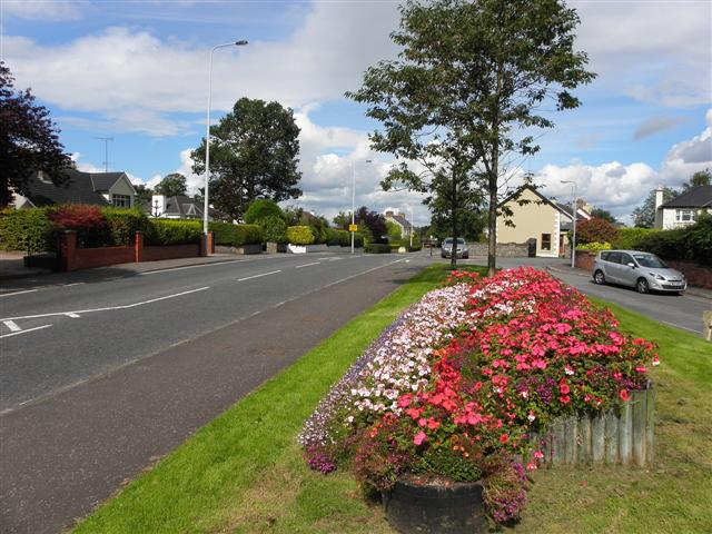Floral display, Dublin Road