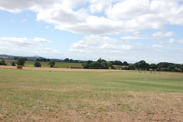 Looking over farmland to the Wrekin