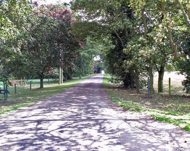 Drive to Pattingden (known as Paddington) Farm