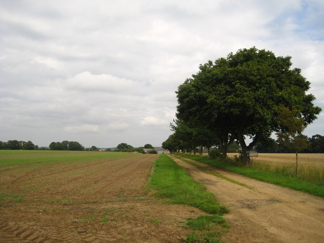 Track to Howe's Farm