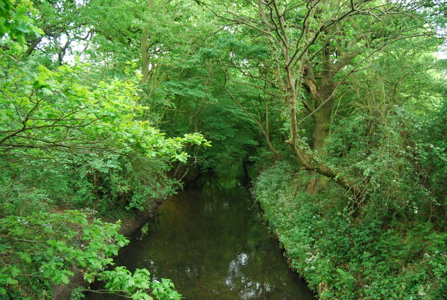 Beverley Brook