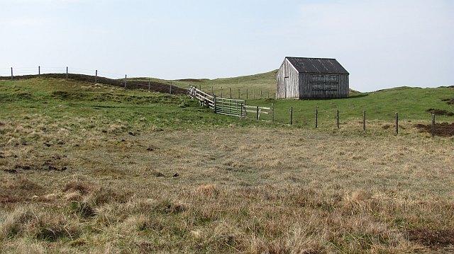 Surviving hut