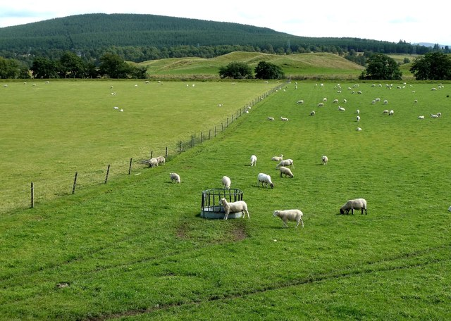 Farmland at Broomhill