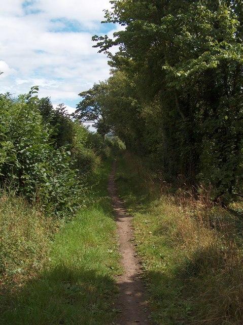 Bridleway north of the River Wharfe near Harewood Bridge
