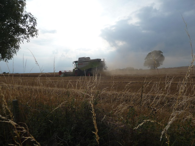 Combine harvesting on an August evening