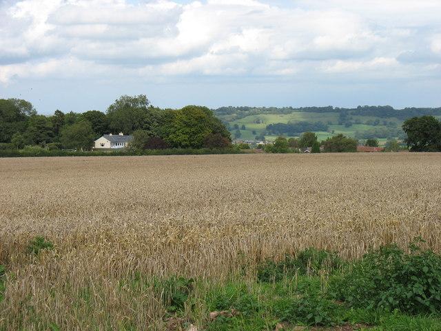 Farmland above East Harptree