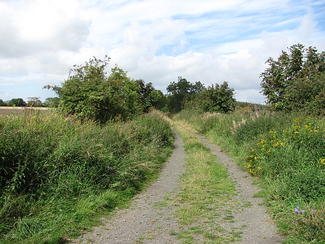 A track on Ely Moor
