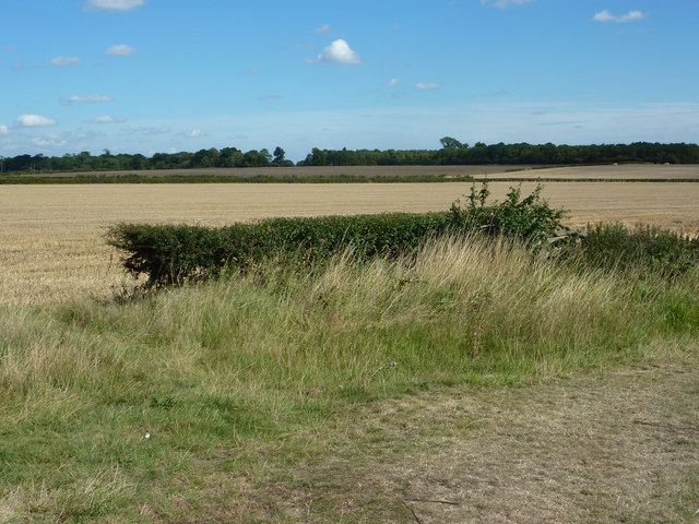 Somerby farmland