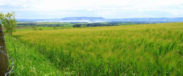 Farm land at Birniehill, by Milnathort