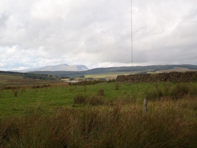 Sheep pen below Corse Hill