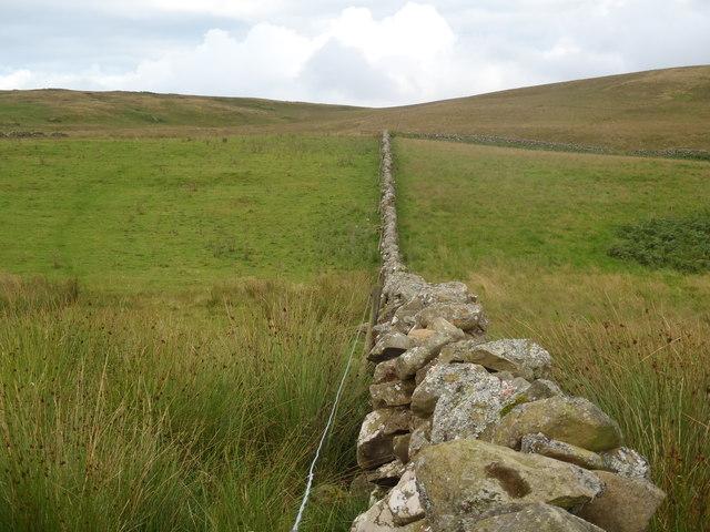 Stane Dyke leading towards Knockman Hill