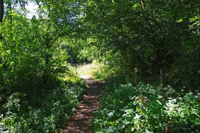 Path near main entrance from car park, Trench Wood, near Sale Green