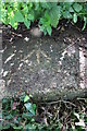 SP4905 : Benchmark on abutment of bridge over Bulstake Stream by Roger Templeman