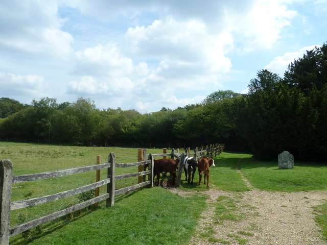 On the path from Nately Road to Greywell Church (6)
