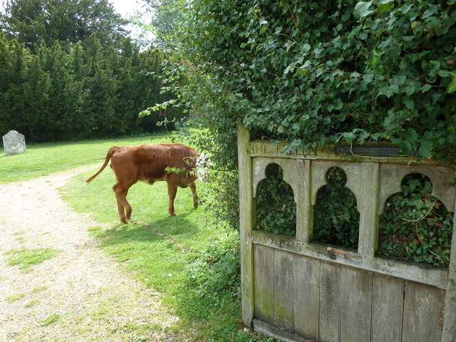 On the path from Nately Road to Greywell Church (7)