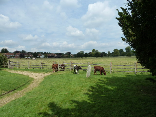 A mooving scene at Greywell