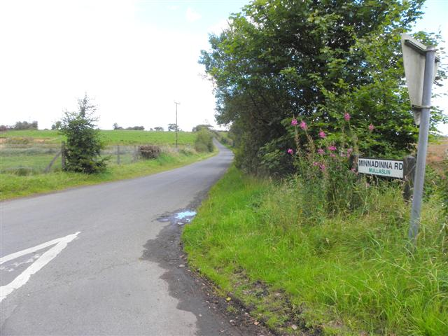 Minnadinna Road, Mullaghslin
