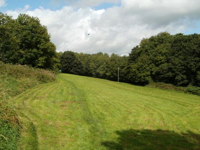 Field alongside Hendredenny Drive, Caerphilly