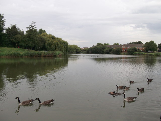 Gallions Park Lake (2)