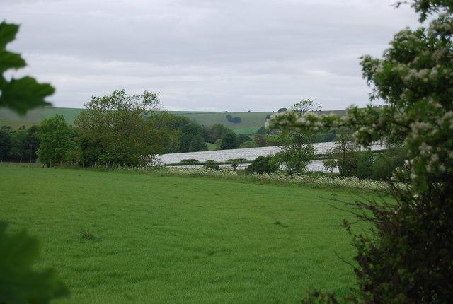 Polytunnels near Upper Beeding