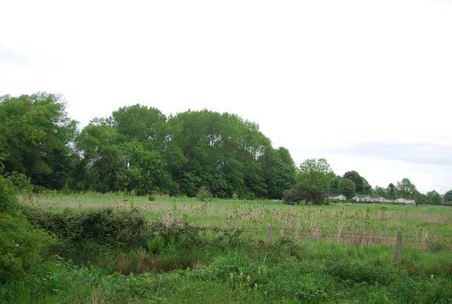 Farmland near Upper Beeding