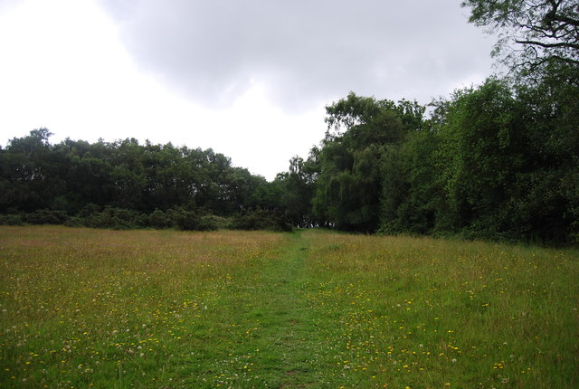 Footpath, Valewood Park