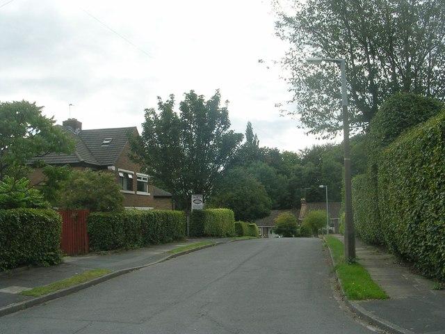 Harper Grove - Harper Avenue