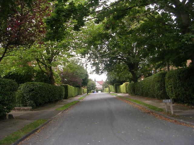 Harper Avenue - Pellon Terrace