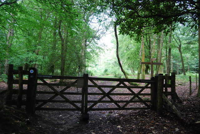 Gate across the Sussex Border Path