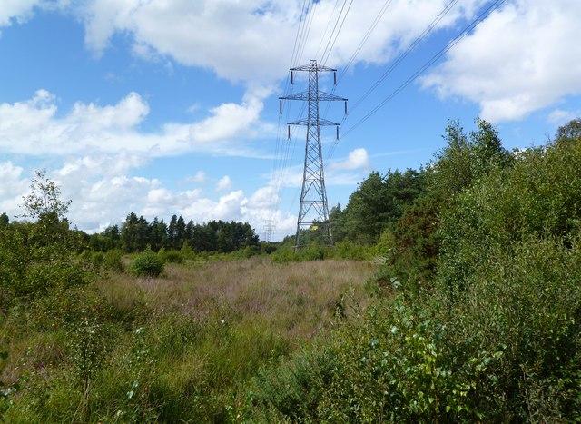 Week, power lines