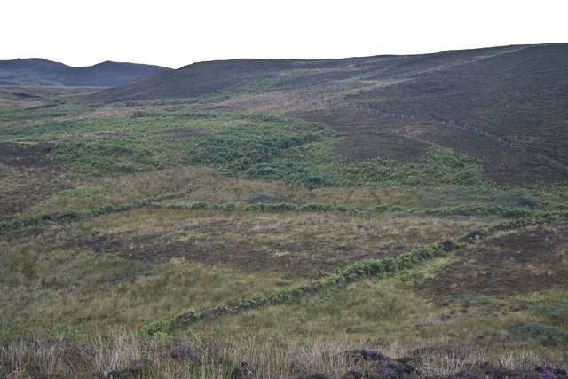 Old Field Boundary near Stremnishmore