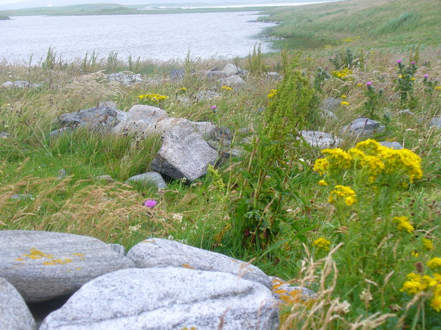 Loch Aird a' Mhuile