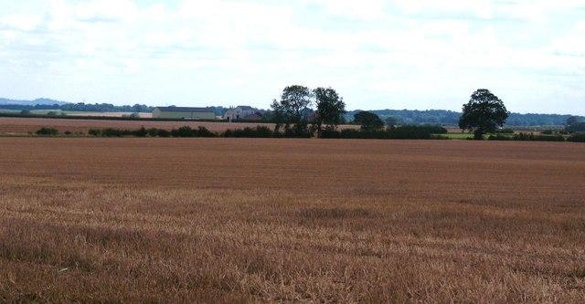 Town End Fields