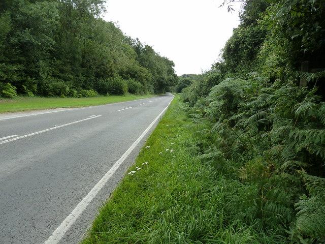 A286 south to Singleton
