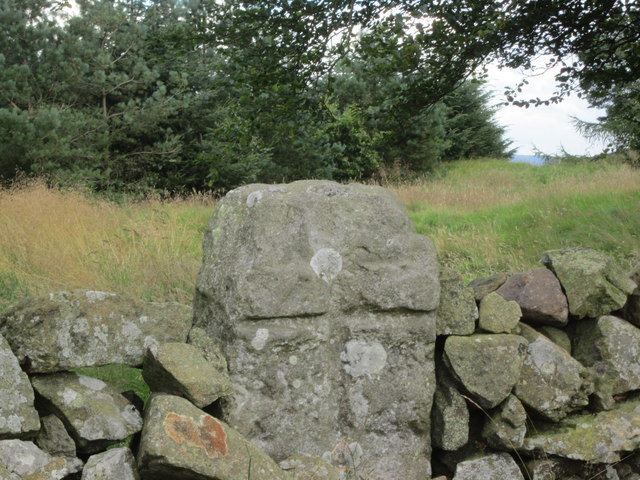 Refuge Stone in wall at Witchcraig Hill