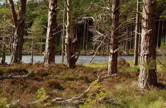 Loch Mallachie