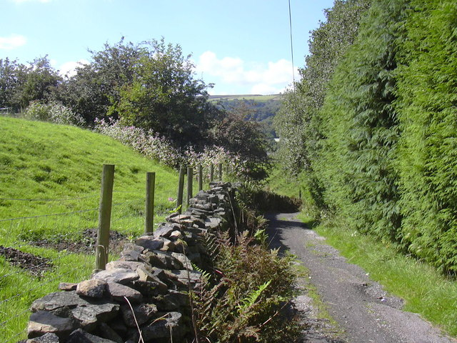 Lane to Stubbins