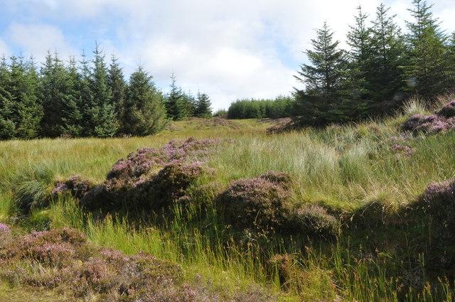 Hidden stream, Cruach na Caol-Bheinn, Kintyre