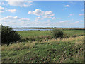 TL3872 : Ouse Fen RSPB by Hugh Venables