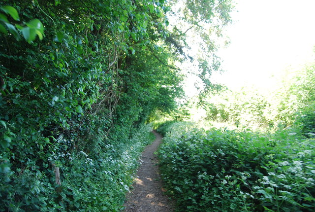 Footpath to Basted