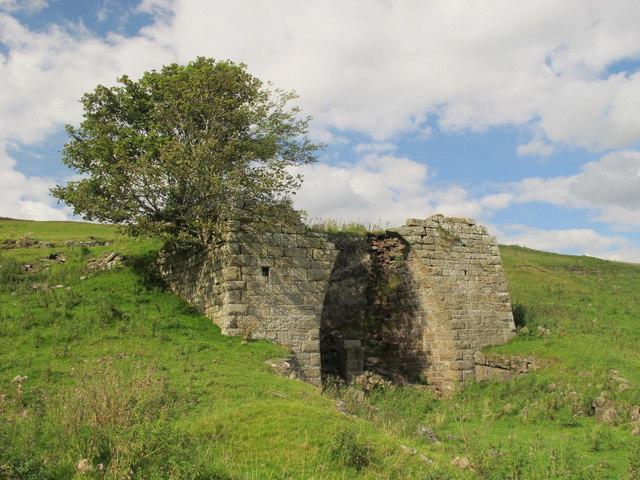 Lime kiln near Alloa Lea