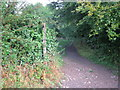 SK2165 : Footpath off Coalpit Lane in Youlgrave by peter robinson