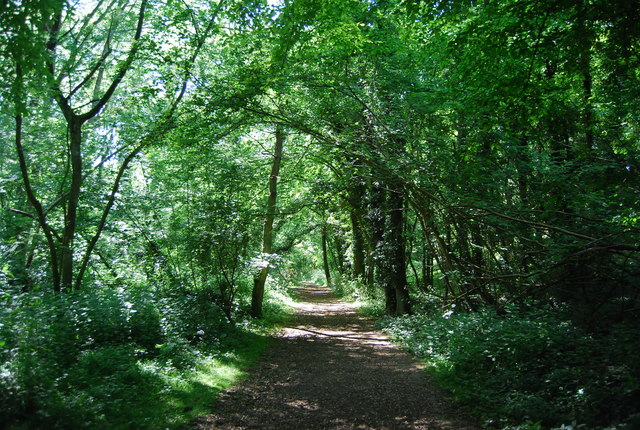 Bridleway to Basted