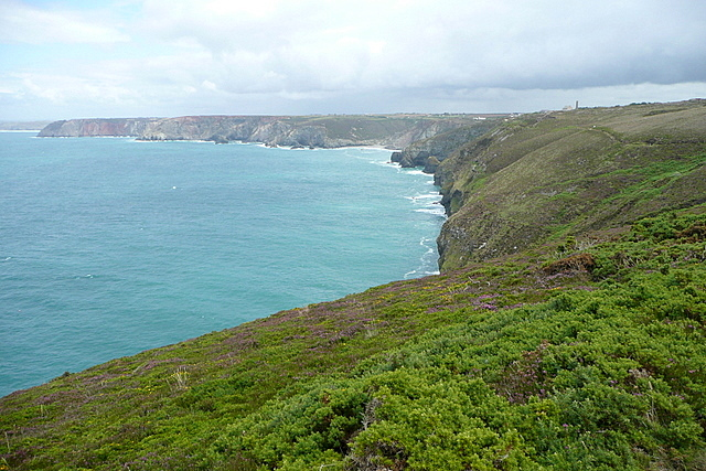 Coastal path above Newdowns Head