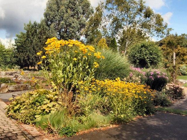 Plants at Secretts Garden Centre