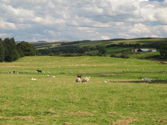 Farmland east of Redpeth